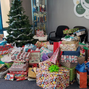 IMAGE: Ironwood Holiday Share gifts under the tree.