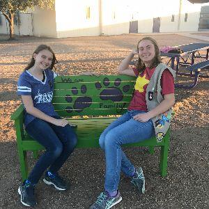 "2nd Paw Print ""Biddy Bench"" on Coyote Trail Playground"