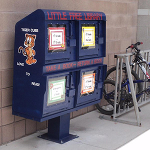 Little Free Library Rack