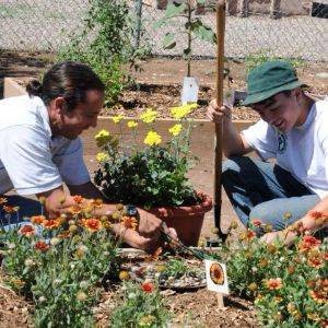 Gardening and Outdoor Education