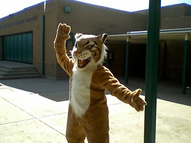 Billy Bobcat with Jazz Hands